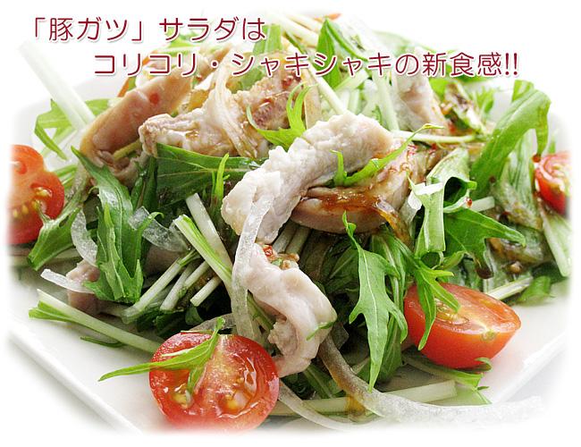 豚ガツサラダはコリコリ・シャキシャキの新食感!!